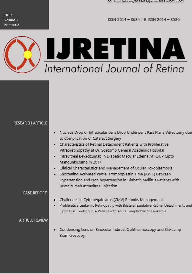 International Journal of Retina (IJRetina) - INAVRS